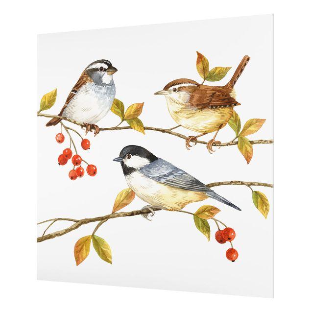 Glas Spritzschutz - Vögel und Beeren - Meisen - Quadrat - 1:1