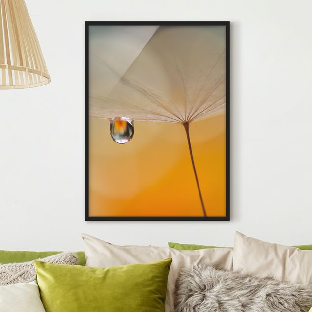 Bild mit Rahmen - Pusteblume in Orange - Hochformat 3:4
