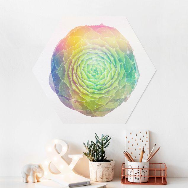 Hexagon Bild Forex - Wasserfarben - Mandala Sukkulente
