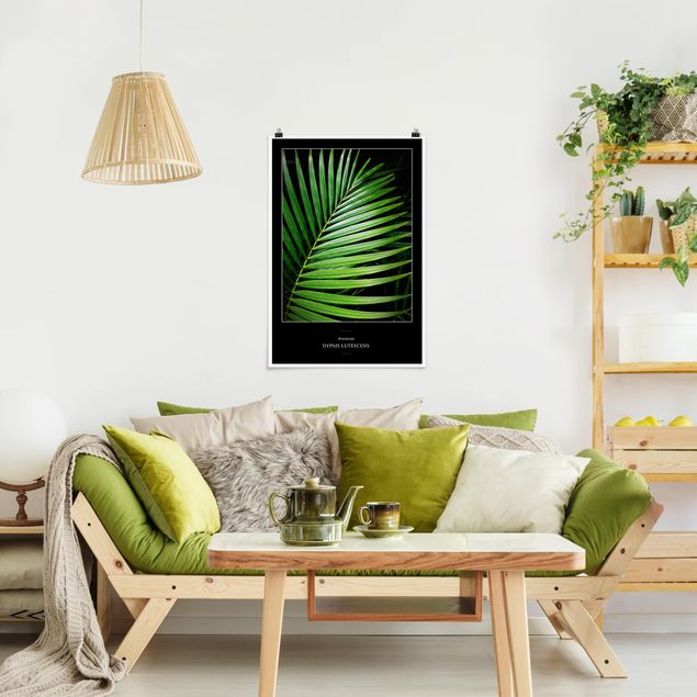 Poster - Tropisches Palmblatt - Hochformat 3:2