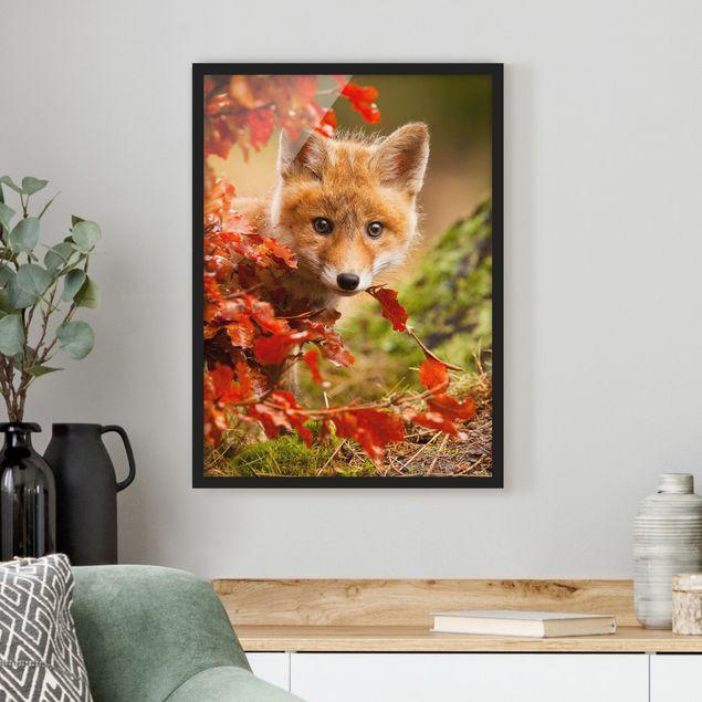 Bild mit Rahmen - Fuchs im Herbst - Hochformat 3:4