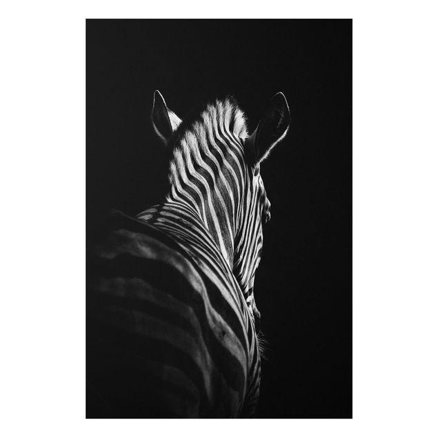 Forex Fine Art Print - Dunkle Zebra Silhouette - Hochformat 3:2