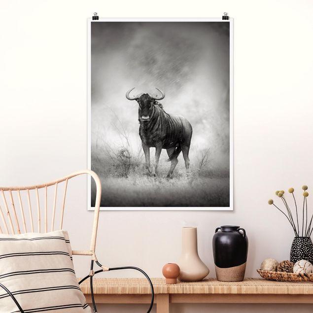 Poster - Staring Wildebeest - Hochformat 3:4
