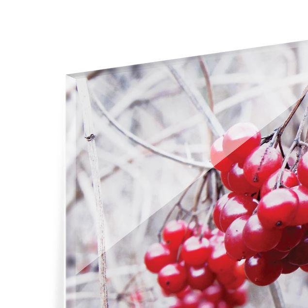 Glas Spritzschutz - No.CA42 Waldfrüchte - Quadrat - 1:1