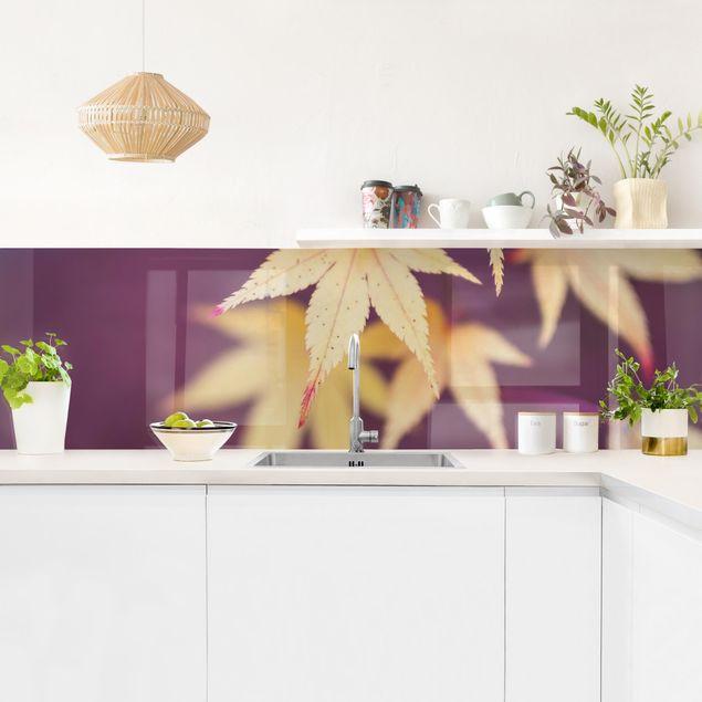Küchenrückwand - Herbstlicher Ahorn