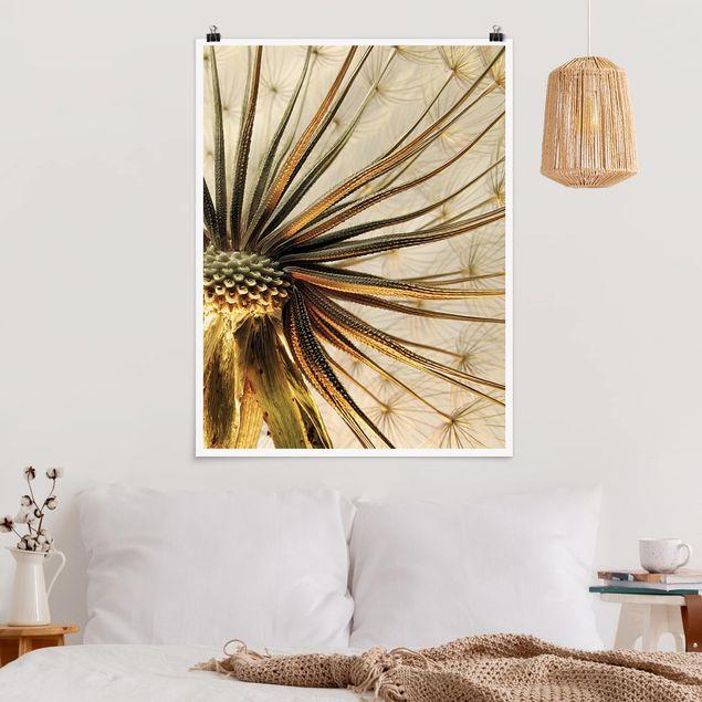 Poster - Dandelion Close Up - Hochformat 3:4