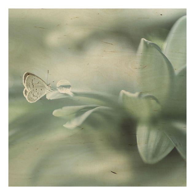 Holzbild - Schmetterling und Tautropfen in Pastellgrün - Quadrat 1:1