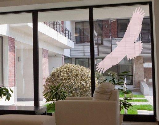 Fensterfolie - Fenstertattoo No.UL524 Greifvogel - Milchglasfolie