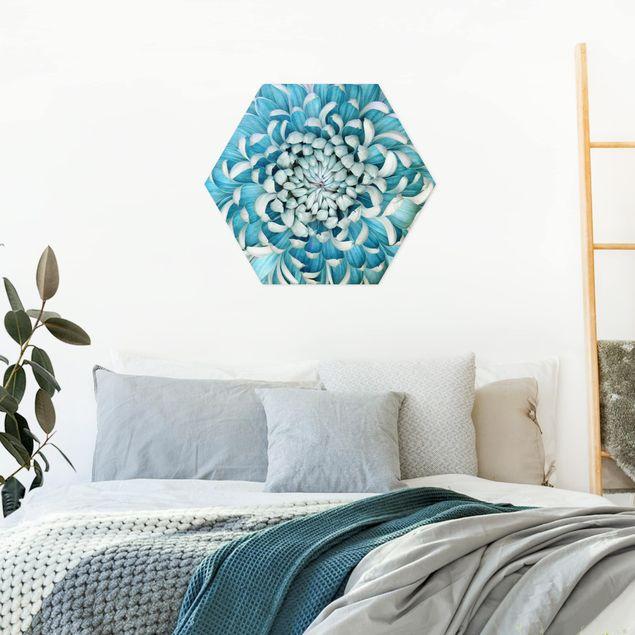 Hexagon Bild Alu-Dibond - Blaue Chrysantheme
