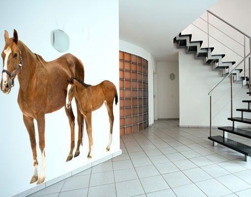 Wandtattoo Pferd No.306 Stute & Fohlen