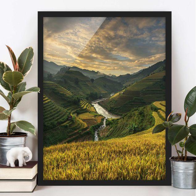Bild mit Rahmen - Reisplantagen in Vietnam - Hochformat 3:4