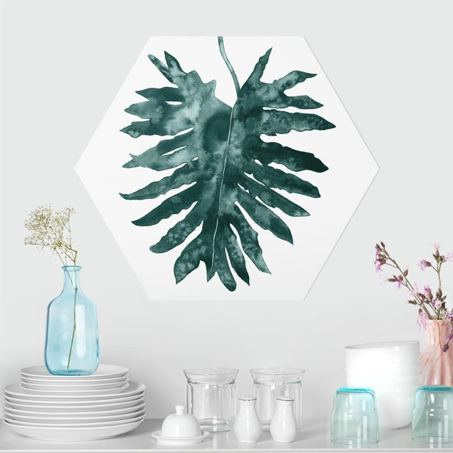 Hexagon Bild Forex - Smaragdgrüner Philodendron Bipinnatifidum