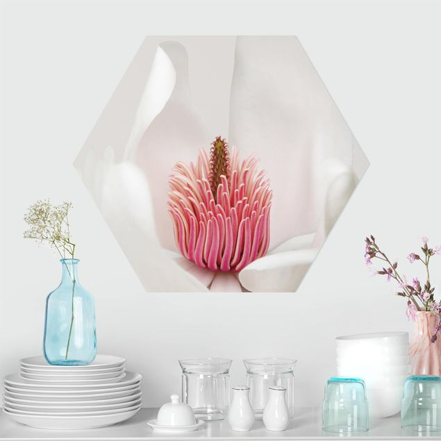 Hexagon Bild Forex - Magnolie in Pink