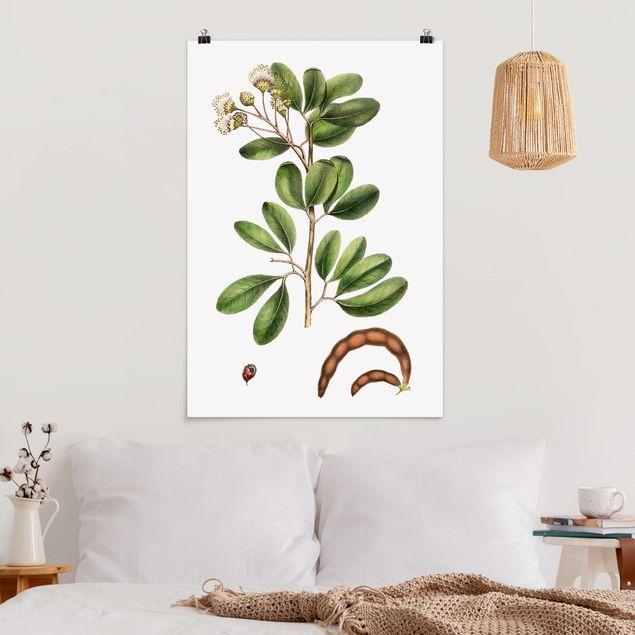 Poster - Laubwerk mit Blüten III - Hochformat 3:2
