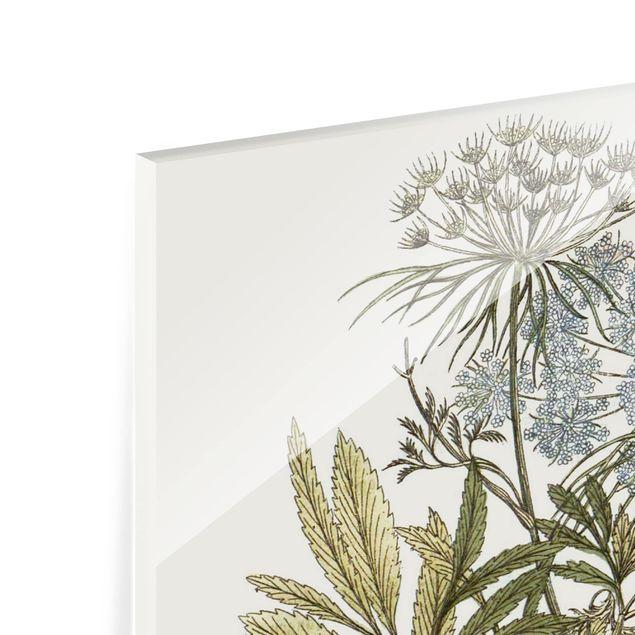 Glas Spritzschutz - Wildkräuter Schautfalel I - Quadrat - 1:1