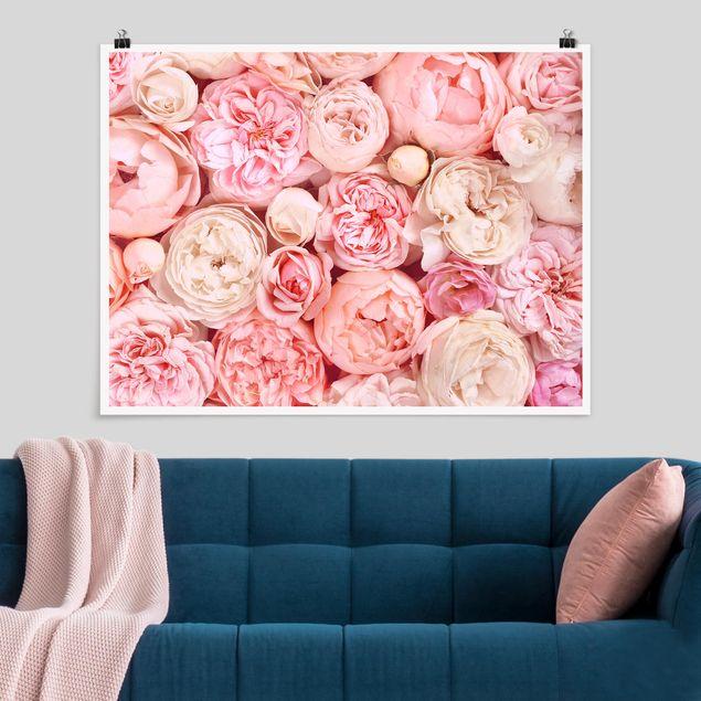 Poster - Rosen Rosé Koralle Shabby - Querformat 3:4