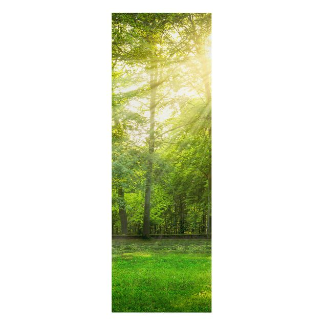 Leinwandbild - Spaziergang im Wald - Panorama Hochformat 1:3