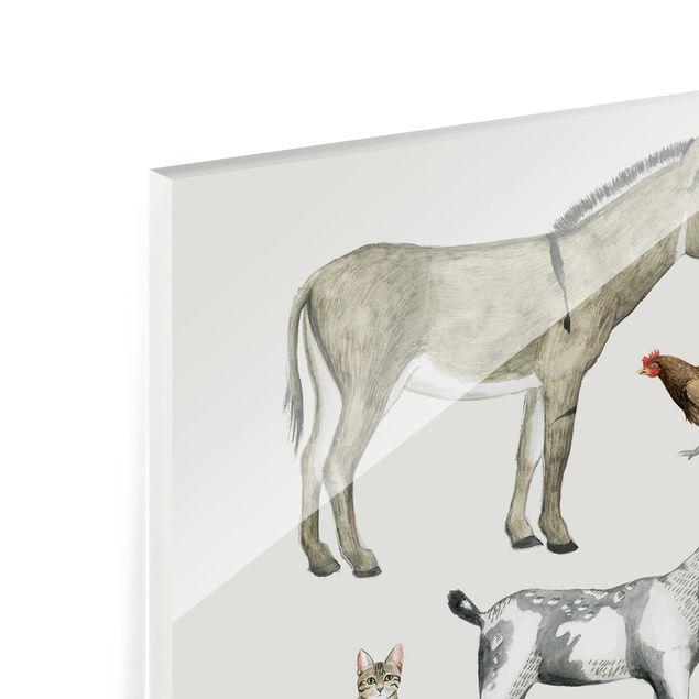 Glas Spritzschutz - Bauernhof Tierfamilie II - Quadrat - 1:1