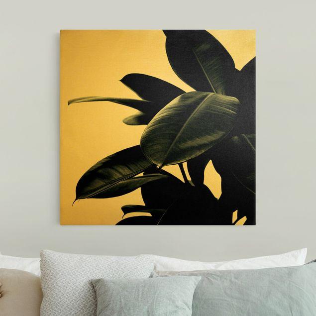 Leinwandbild Gold - Gummibaum Blätter Dunkelgrün - Quadrat 1:1