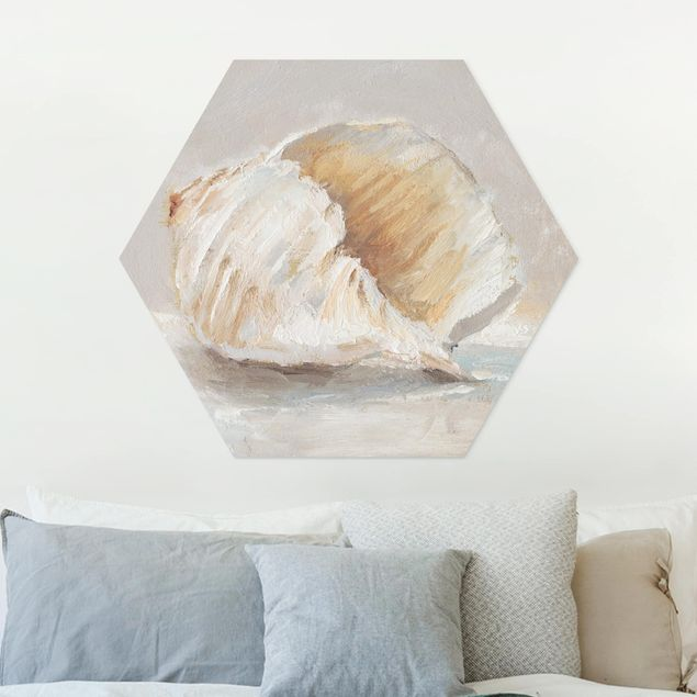 Hexagon Bild Forex - Muschel-Studie IV