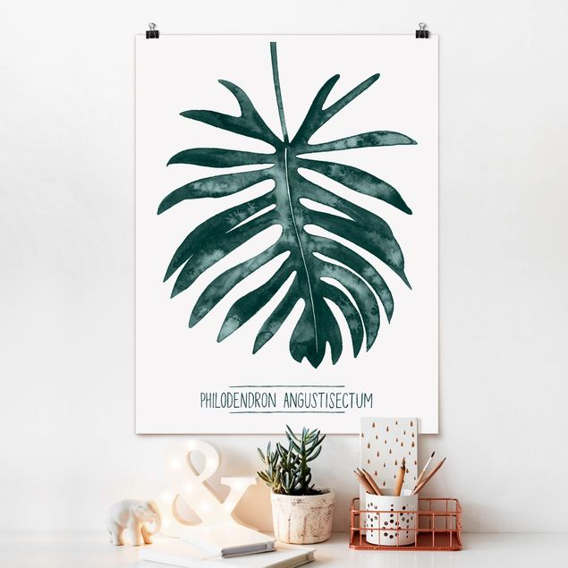Poster - Smaragdgrüner Philodendron Angustisectum - Hochformat 3:4