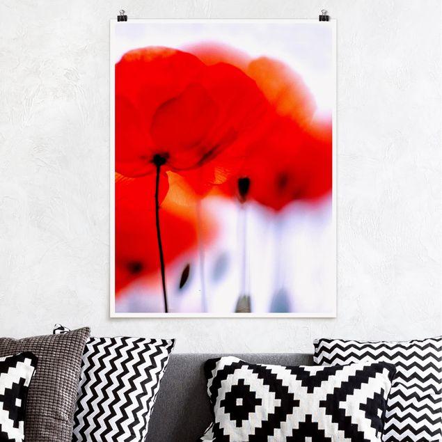 Poster - Magic Poppies - Hochformat 3:4