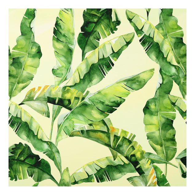 Glas Spritzschutz - Bananenblätter Aquarell - Quadrat - 1:1