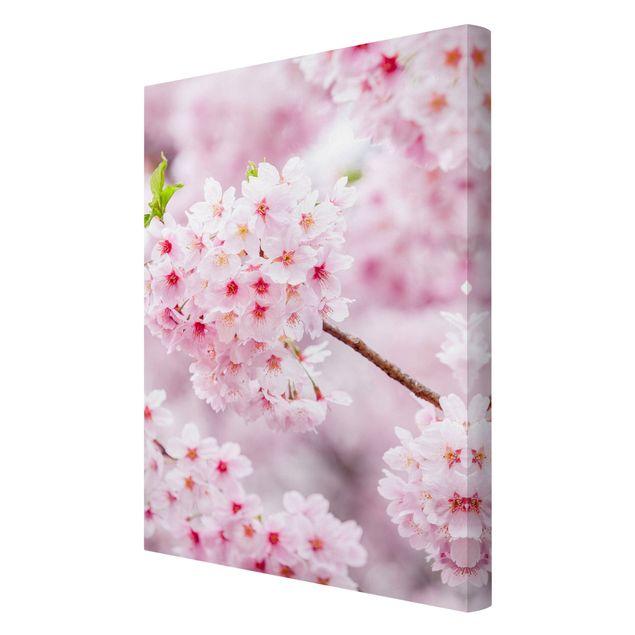 Leinwandbild - Japanische Kirschblüten - Hochformat 2:3