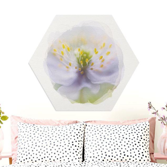 Hexagon Bild Forex - Wasserfarben - Anemonen Schönheit