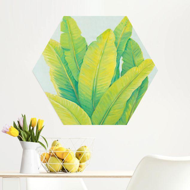 Hexagon Bild Alu-Dibond - Gelbgrüne Bananenblätter
