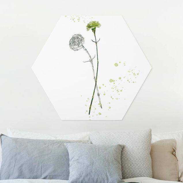 Hexagon Bild Forex - Botanisches Aquarell - Nelke