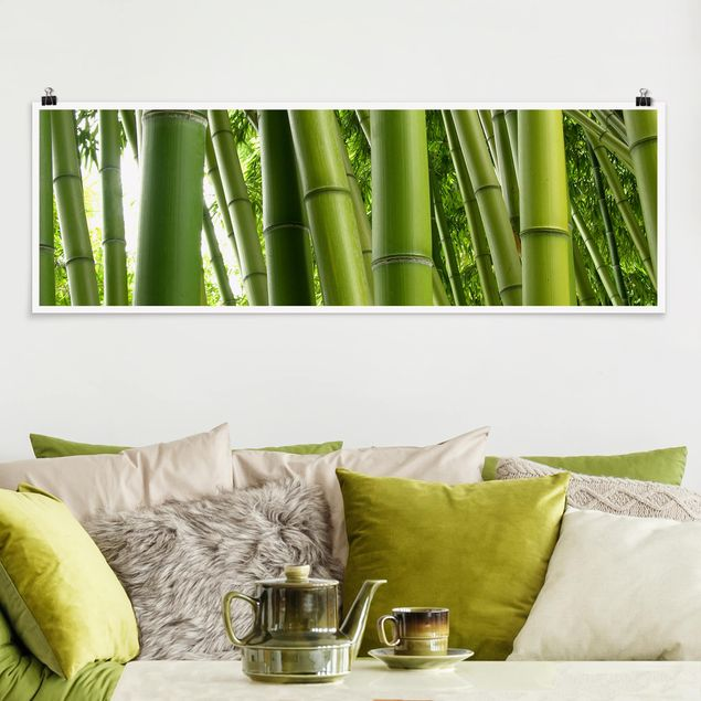 Poster - Bamboo Trees - Panorama Querformat