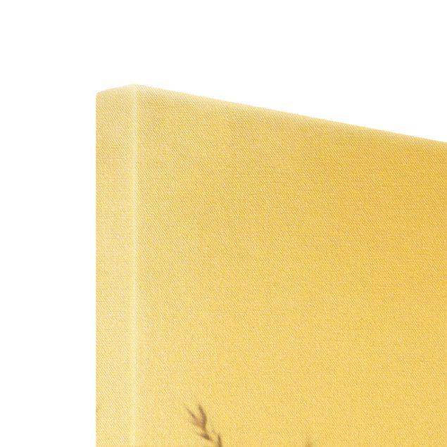 Leinwandbild Gold - Getrocknetes Kammgras - Hochformat 2:3