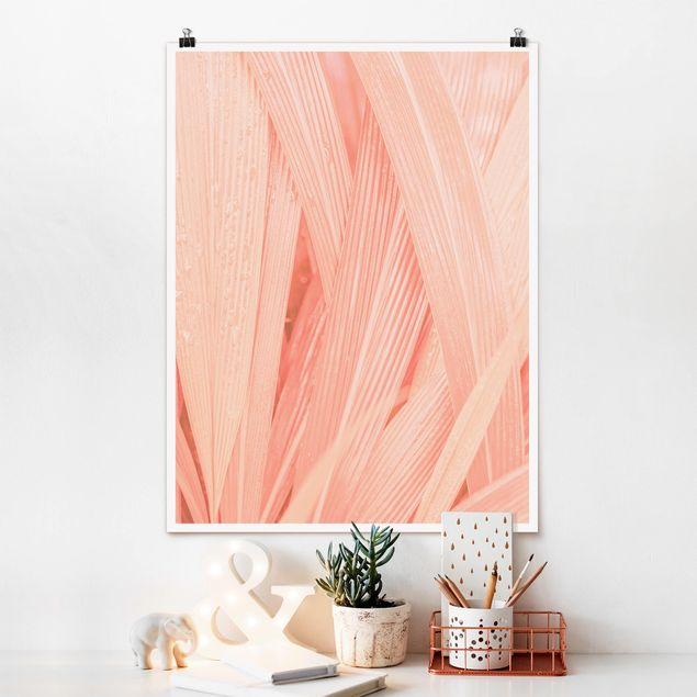 Poster - Palmenblätter Rosa - Hochformat 3:4