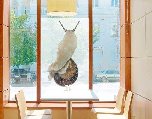 Fensterfolie - Sichtschutz Fenster Schnecke auf Wanderschaft - Fensterbilder