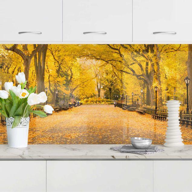 Küchenrückwand - Herbst im Central Park