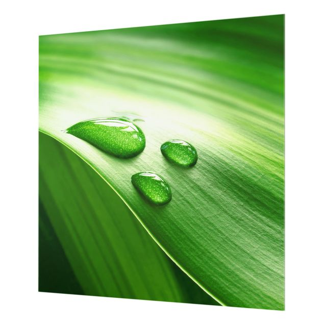 Glas Spritzschutz - Bananenblatt mit Tropfen - Quadrat - 1:1