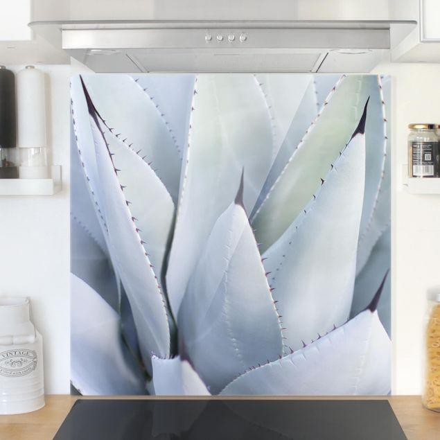 Glas Spritzschutz - Agavenblätter - Quadrat - 1:1