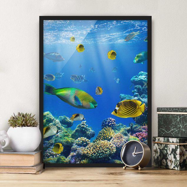Bild mit Rahmen - Underwater Lights - Hochformat 3:4