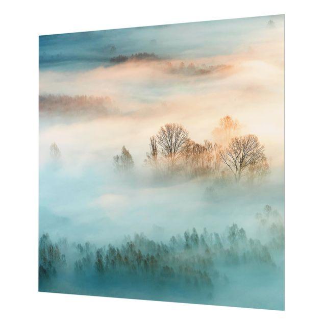 Glas Spritzschutz - Nebel bei Sonnenaufgang - Quadrat - 1:1
