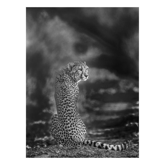 Forex Fine Art Print - Gepard in der Wildness - Hochformat 4:3