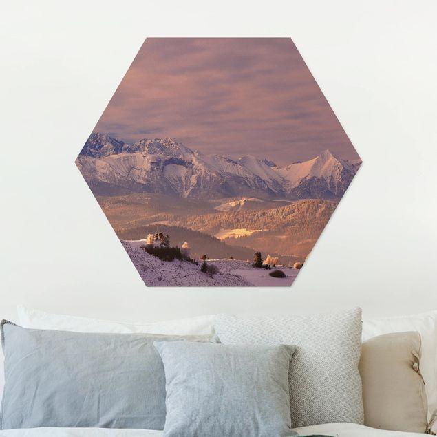 Hexagon Bild Alu-Dibond - Hohe Tatra am Morgen