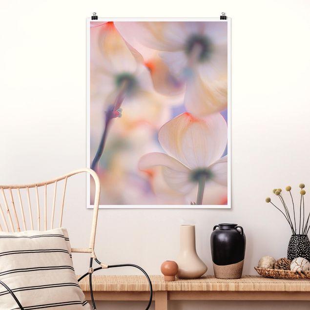 Poster - Unter Blüten - Hochformat 3:4