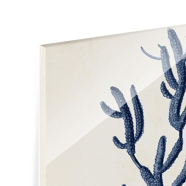 Glas Spritzschutz - Indigo Koralle II - Quadrat - 1:1