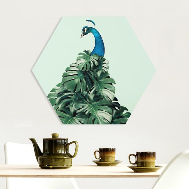 Hexagon Bild Forex - Jonas Loose - Pfau mit Monstera Blättern