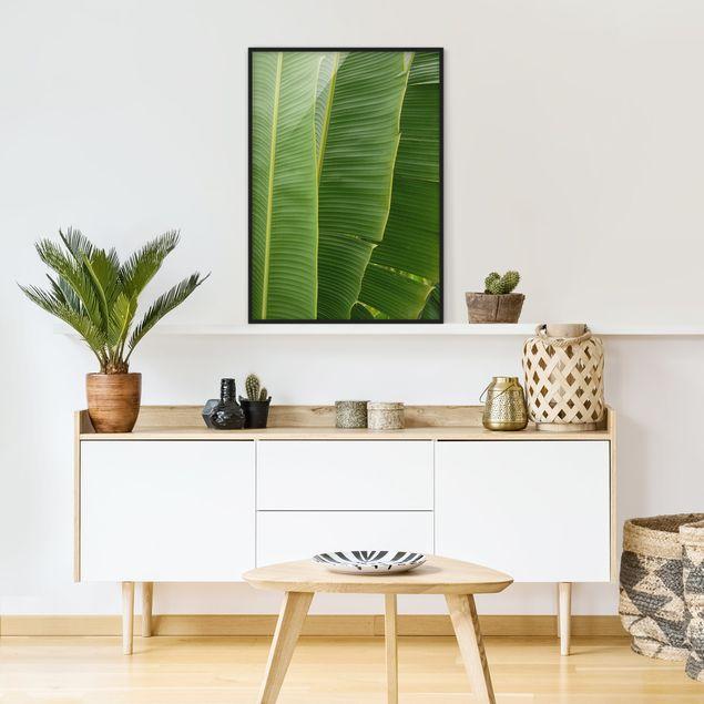 Bild mit Rahmen - Banana Leaves - Hochformat 3:4