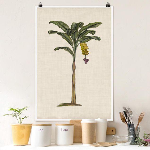 Poster - Britische Palmen III - Hochformat 3:2