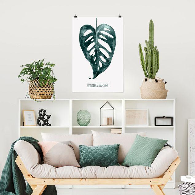 Poster - Smaragdgrüne Monstera Adansonii - Hochformat 3:2