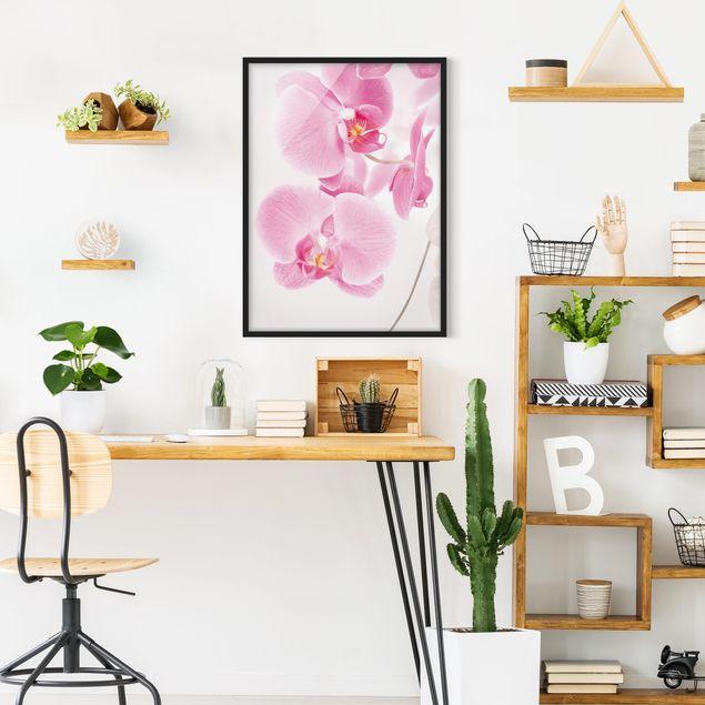 Bild mit Rahmen - Delicate Orchids - Hochformat 3:4