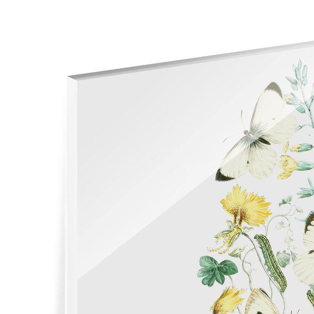 Glas Spritzschutz - Britische Schmetterlinge II - Querformat - 4:3